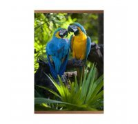 Пленочный обогреватель домашний очаг попугаи