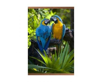 Купить Пленочный обогреватель домашний очаг попугаи в Новосибирске